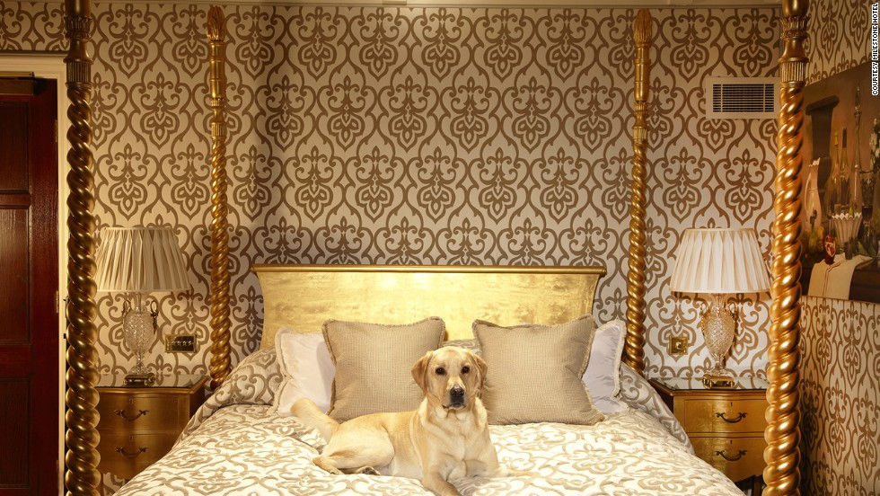 Pet Friendly Hotels On Cape Cod Part - 24: Worldu0027s Top Pet-friendly Hotels | CNN Travel