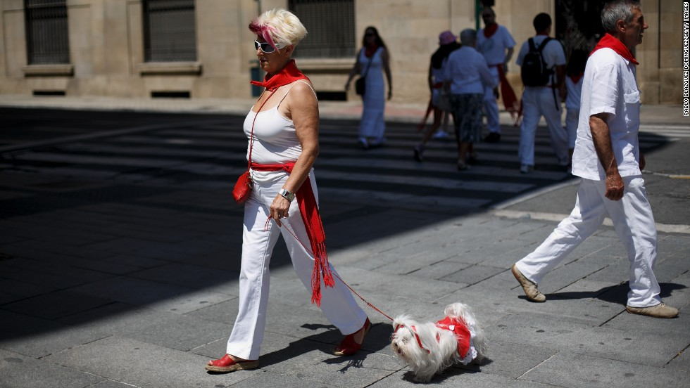 A dog dressed up for the Running of the Bulls festival in Pamplona, Spain, goes for a walk.