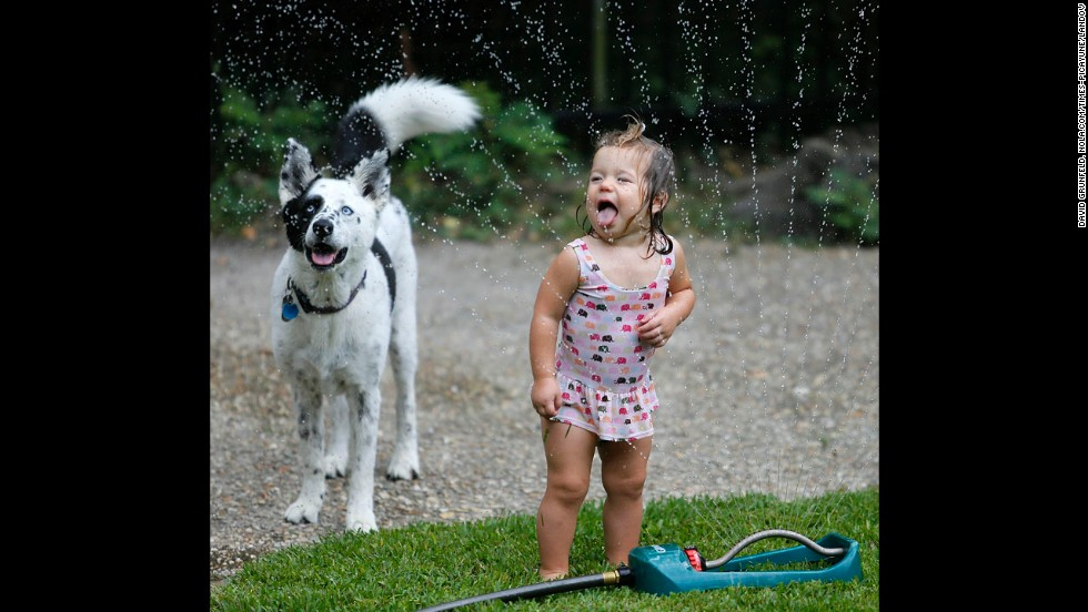 June Lunsford, 18 months, and her dog, Bella, discovered the beauty of sprinklers in the New Orleans heat.