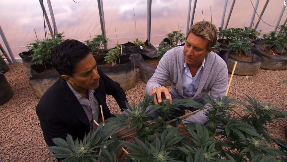 "The brothers started the <a href=""http://realmofcaring.com/"" target=""_blank"">Realm of Caring Foundation</a>, a nonprofit organization that provides cannabis to adults and children suffering from a host of diseases. Here Josh Stanley, right, gives CNN's Dr. Sanjay Gupta a tour.<br />"