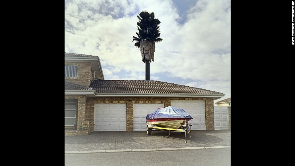 "South African photographer Dillon Marsh traveled around Cape Town searching for trees with an ulterior motive. Cell phone towers disguised as trees have popped up all around South Africa. Marsh <a href=""http://www.dillonmarsh.com/invasivespecies.html"" target=""_blank"">states on his website</a> that his project ""Invasive Species"" looks at these covert towers and their surroundings in Cape Town. Above, a tower looms over the suburb Brackenfell South."