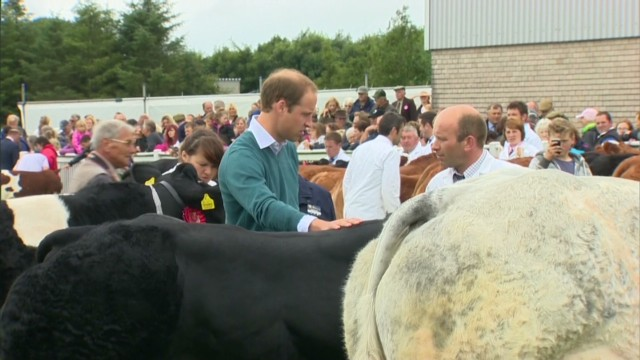 Back to work for Prince William