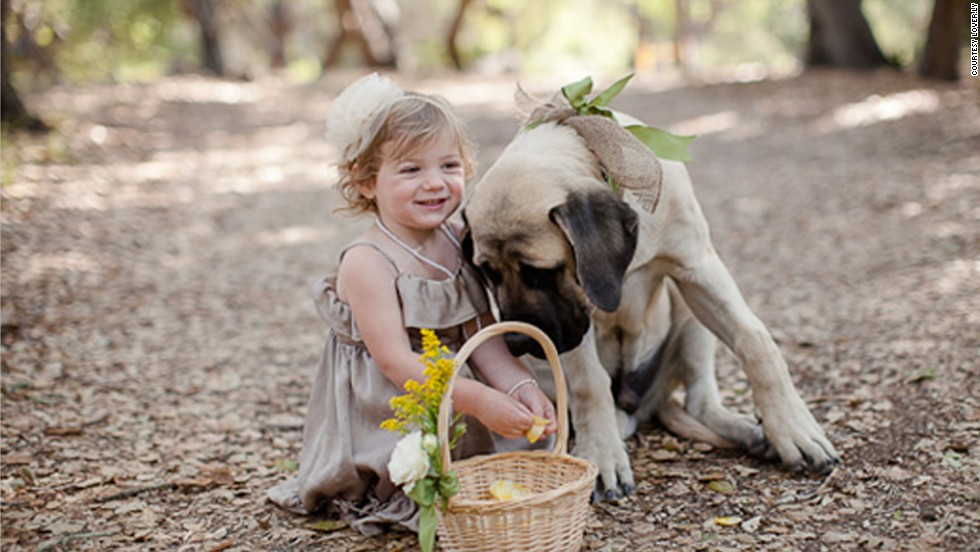 Wedding planners know that children or pets in the wedding ceremony can often steal the whole show.