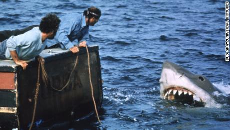 Films essentiels des années 1970 de 'Jaws' à 'Being There'
