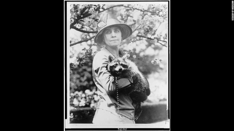 President Calvin Coolidge's wife, Grace, holds her pet raccoon, Rebecca.