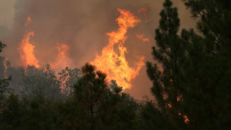 Flames eat up trees as the fire continues to burn out of control on August 23.