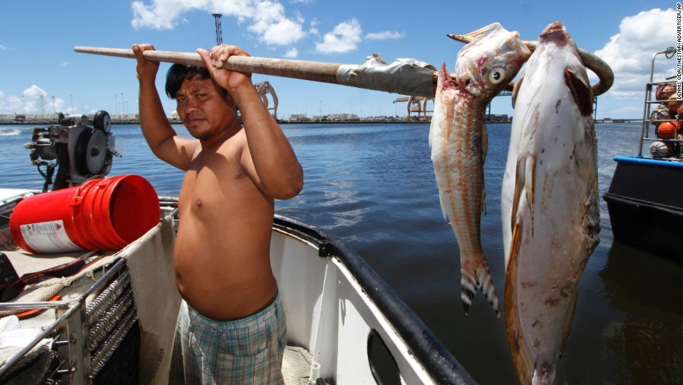 Placido Shim gaffed these dead fish as they were floating past his boat on Wednesday, September 11.