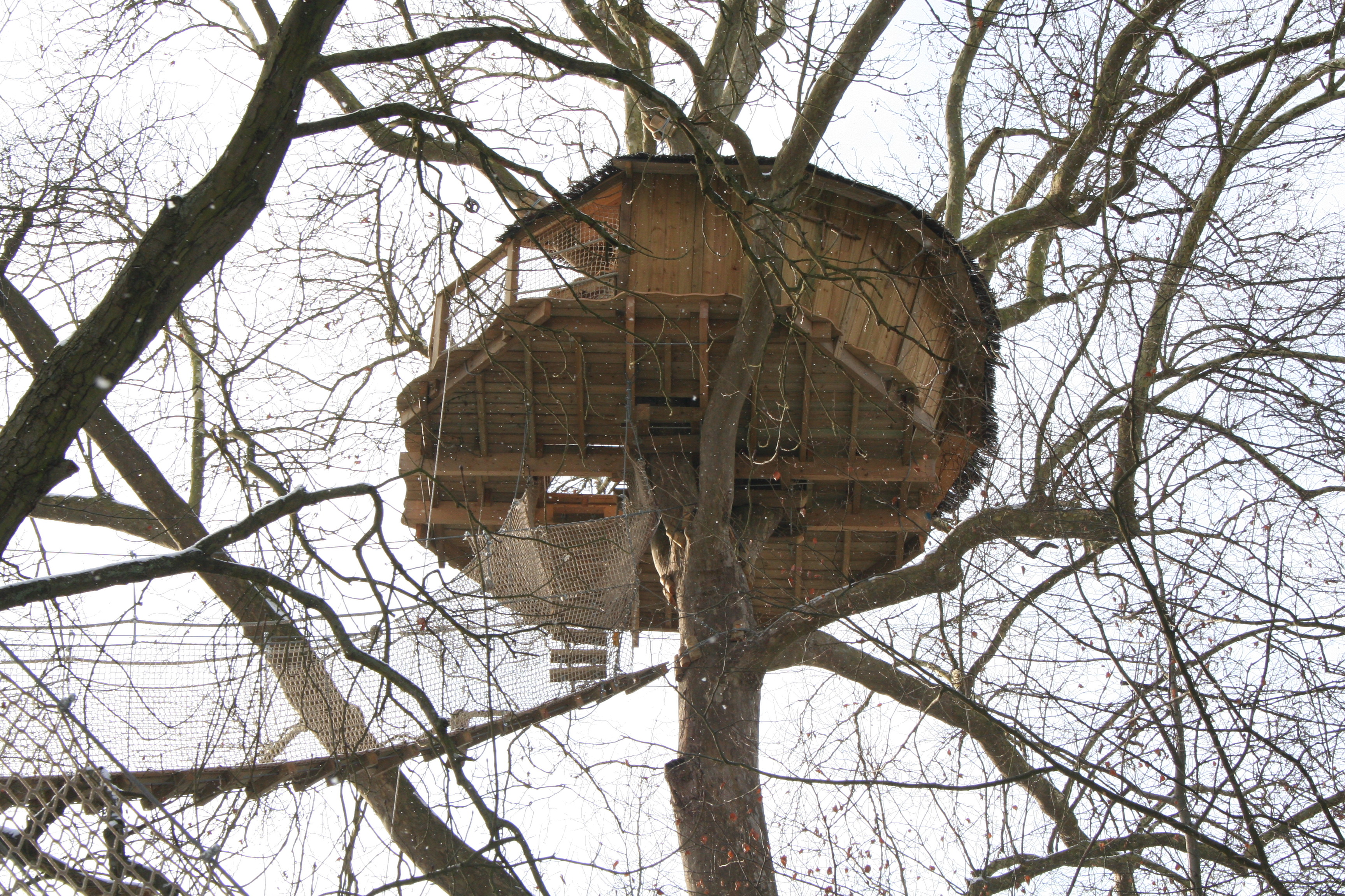 on simple good design squirrel treehouse