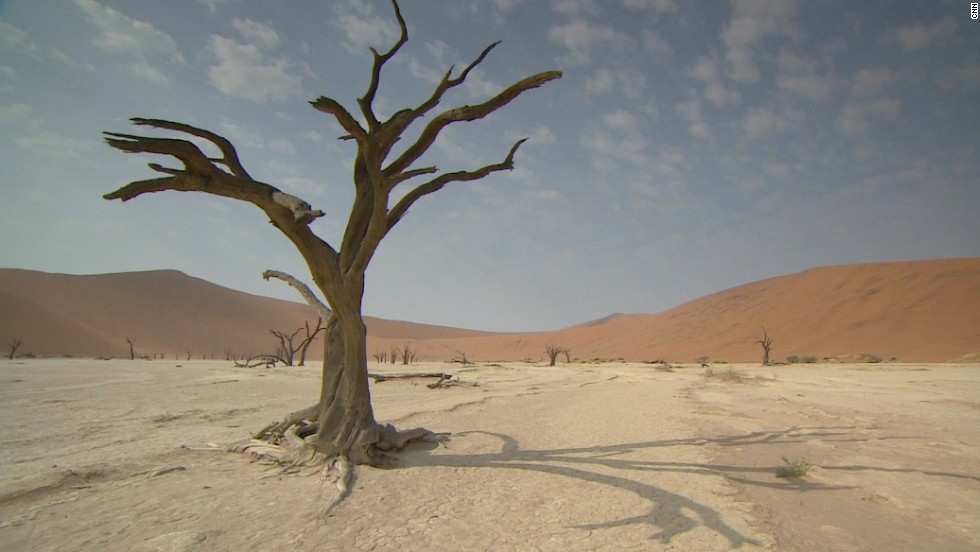The desert gets less than 0.4 inches of rain annually and is almost completely barren.