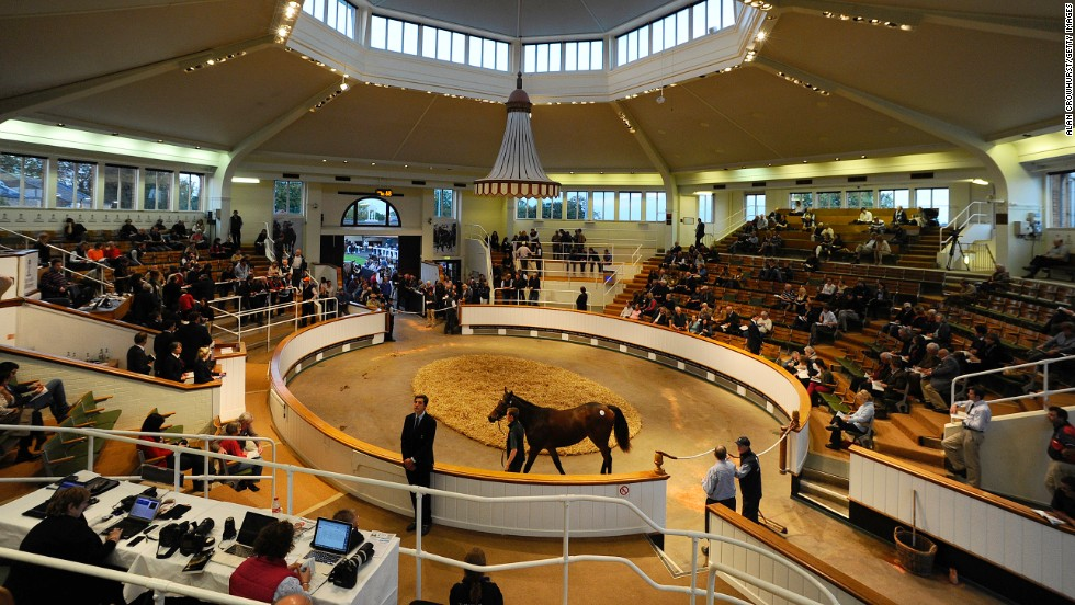 The Craven Breeze Up Sale is Europe's premier sale of its kind and takes place at Newmarket's Rowely Miles before horses on show return to the nearby headquarters of leading auction house Tattersalls (pictured).