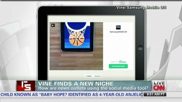RS.Vine.finds.a.new.niche_00024706.jpg