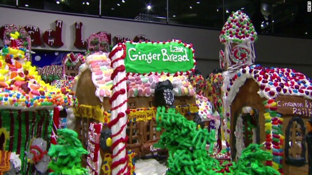wxp vo attempted world record gingerbread village_00005605.jpg