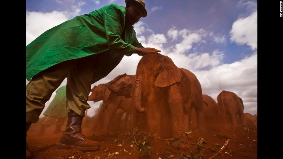 <strong>June 5:</strong> Ajabu, a 2-month-old orphaned baby elephant, is given a dust bath after being fed at an event to mark World Environment Day in Nairobi, Kenya.