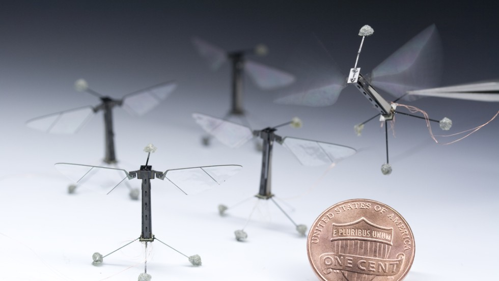 Scientists at Harvard's School of Engineering and Applied Sciences have developed a miniature flying robot that emulates a wasp or bee. The innovative new mechanical insect serves many purposes, including search & rescue in inaccessible areas, military surveillance or risk assessment.