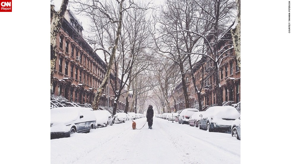 "Spending a quiet moment out in the snow, <a href=""http://ireport.cnn.com/docs/DOC-1072196"">Tamara Peterson</a> photographed a neighbor walking her dog in the Fort Greene neighborhood of New York City."