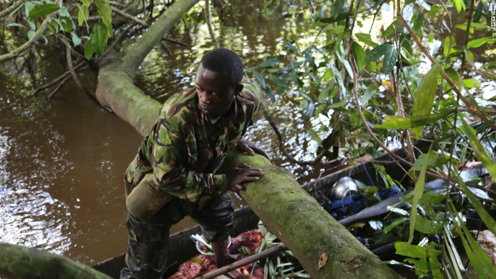 Eco Guard Vianney Evoura inspects the poacher's dug out canoe. He used to poach for a trafficking ring leader back in 2004, now he's testified against him in court.
