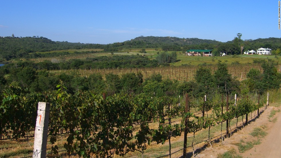 Bushman Rock vineyard: The climate and soils in Melfort, Zimbabwe, create suitable conditions for wine production in the Bordeaux style. Bushman Rock claims it is producing unique Zimbabwean wines in the old world fashion.