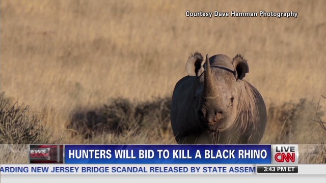 Hunters will bid to kill a black rhino