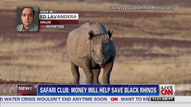 $350K for black rhino hunting permit