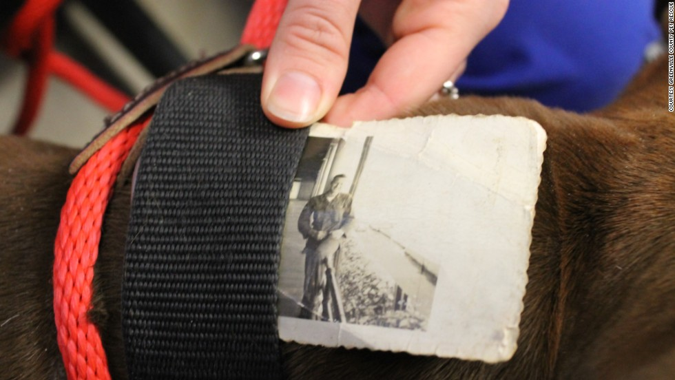 An old black-and-white photo was found tucked inside the collar of a stray dog in South Carolina.