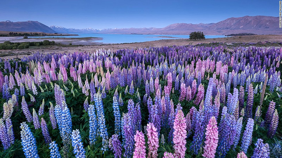 Photos Of South Island New Zealand Great Places For Pictures - 10 geological hotspots to visit in new zealand