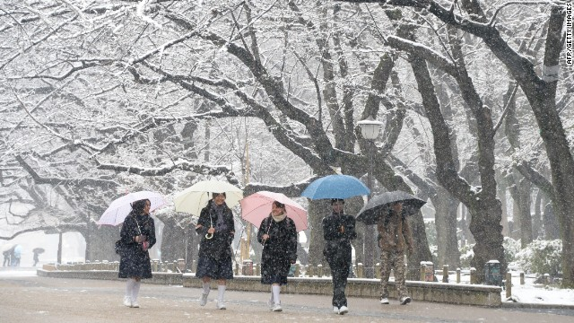 Students walk under snow covered trees at a park in Tokyo on February 14, 2014.