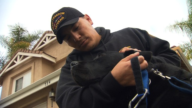 Group pairs service dogs to wounded vets