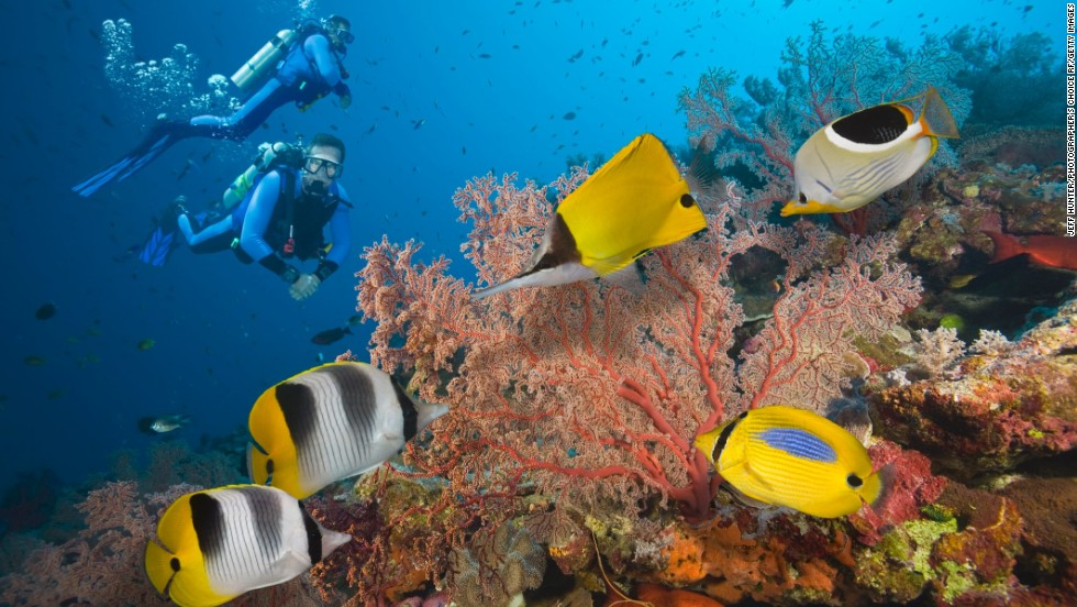 "A trip to <strong>Australia</strong>, the world's happiest industrialized nation<strong>, </strong>wouldn't be complete without visiting the <a href=""http://www.australia.com/explore/icons/great-barrier-reef.aspx"" target=""_blank"">Great Barrier Reef</a>. It's one of the seven natural wonders of the world. Australia ranks at the top in civic engagement, which looks at voters' participation among other criteria. It also comes out above average, in the list of  36 countries, in environmental quality, health status, housing, personal security, jobs and earnings, education and skills, subjective well-being, social connections, and income and wealth. The only category in which Australia lags behind the average is work-life balance, the OECD says."