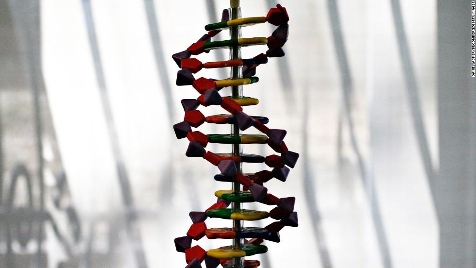 Designer genes take a leap forward after scientists make new chromosome