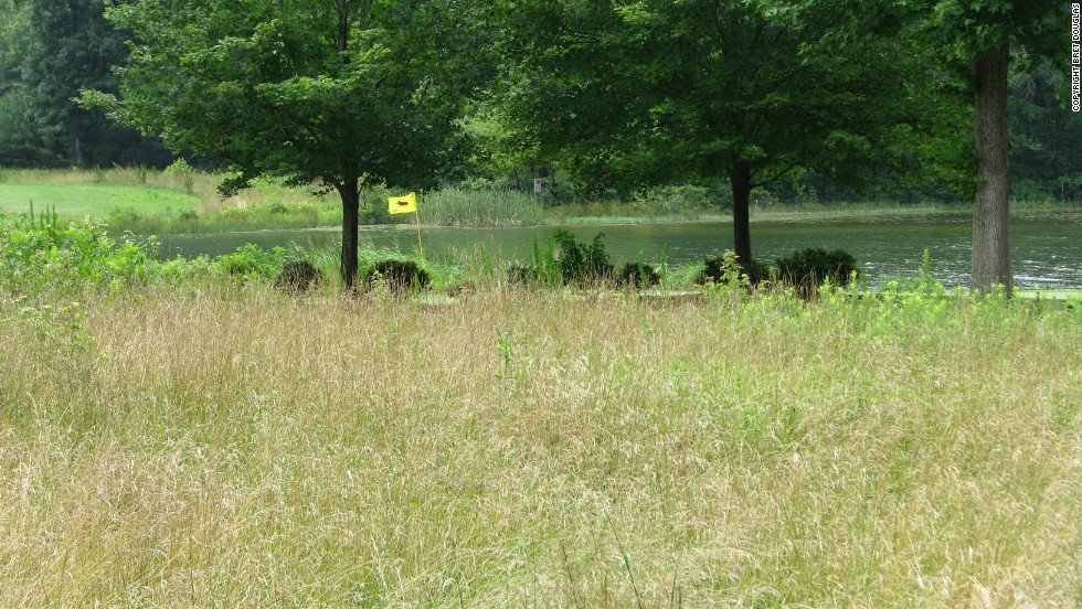 In addition to measures that protect wildlife populations, Carter has overseen a program which has reduced the amount of mowing and water use. He estimates that in the last decade, the course has returned 50 acres to a more natural state, saving over seven million gallons of water annually.
