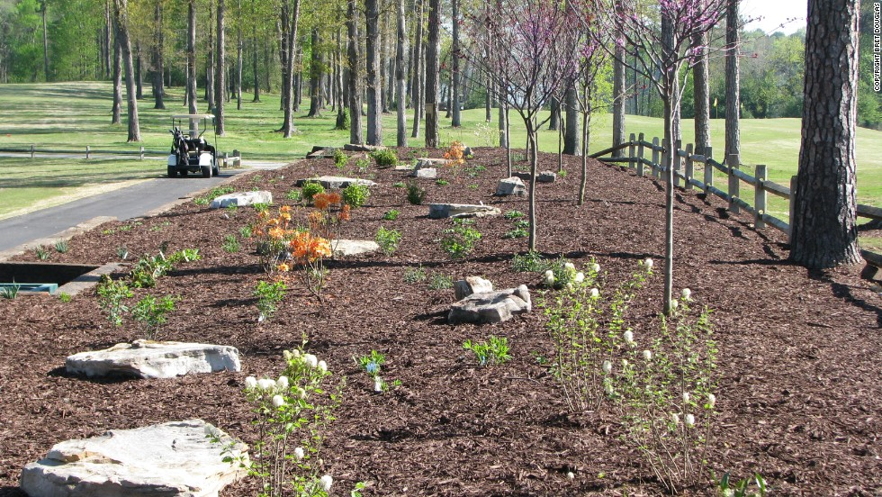 The club has also introduced native planting beds. Carter has been recognized for his environmental efforts with several awards in recent years, including the 2013 Environmental Leaders in Golf Award. <br />