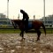 kentucky derby wet weather