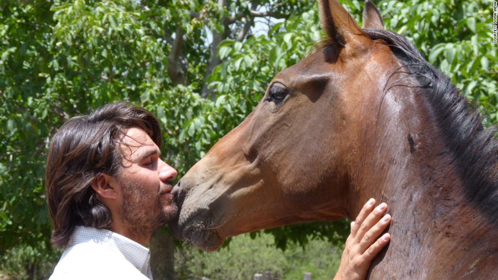 He says horses and people all experience similar emotions, such as empathy, affection, respect and solidarity.