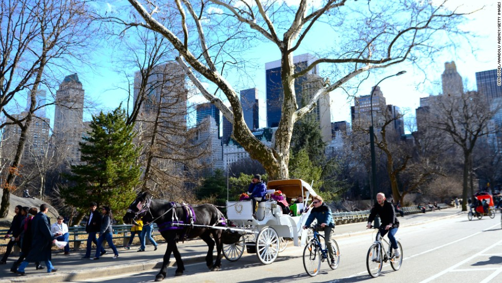 New Yorkers enjoy the sun in Central Park on Manhattan, New York.  The United States rank number seven in the OECD list, at the top in housing, and income and wealth, but below average in work-life balance.
