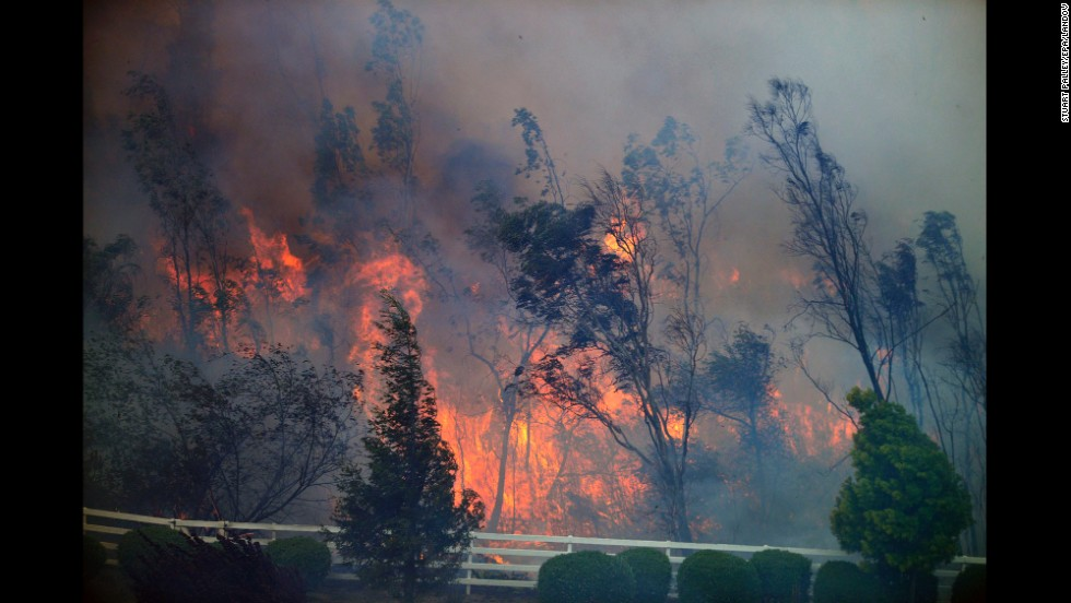 Trees burn on May 13 as a San Diego wildfire moves through a canyon between Rancho Santa Fe and the Fairbanks Ranch area.