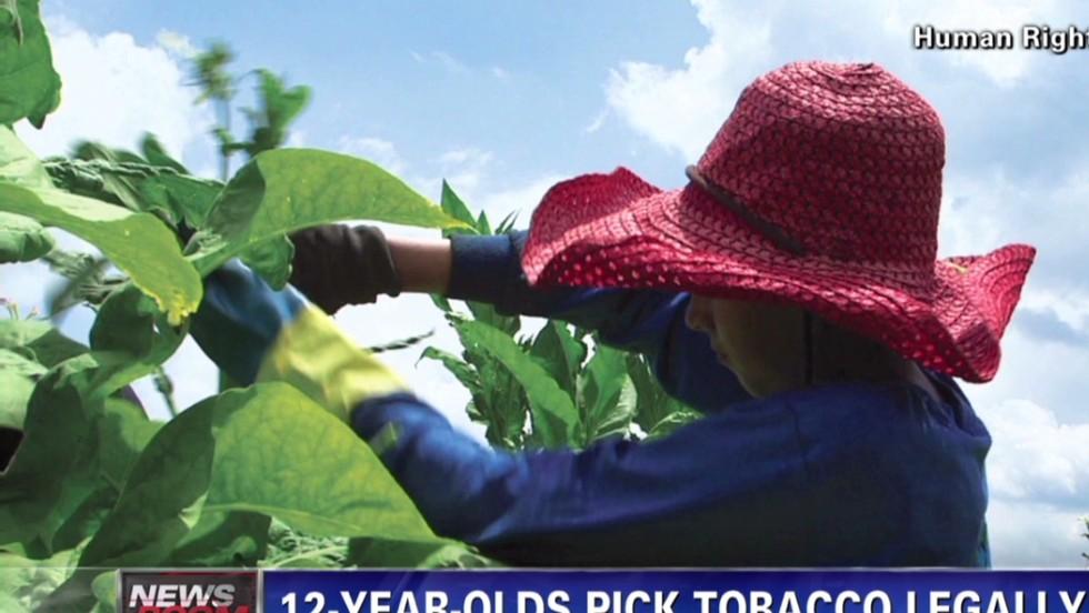 Kids: Tobacco farm work making us sick - CNN Video