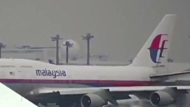 Family of MH370 passenger reacts to film