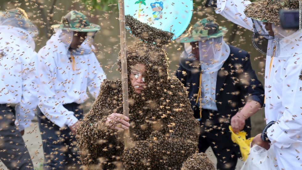 Gao Bingguo is covered with bees as he tries to break a Guinness World Record in Taian, China, on Tuesday, May 27. He set the record after having 326,000 bees on his body at one time, according to local media.