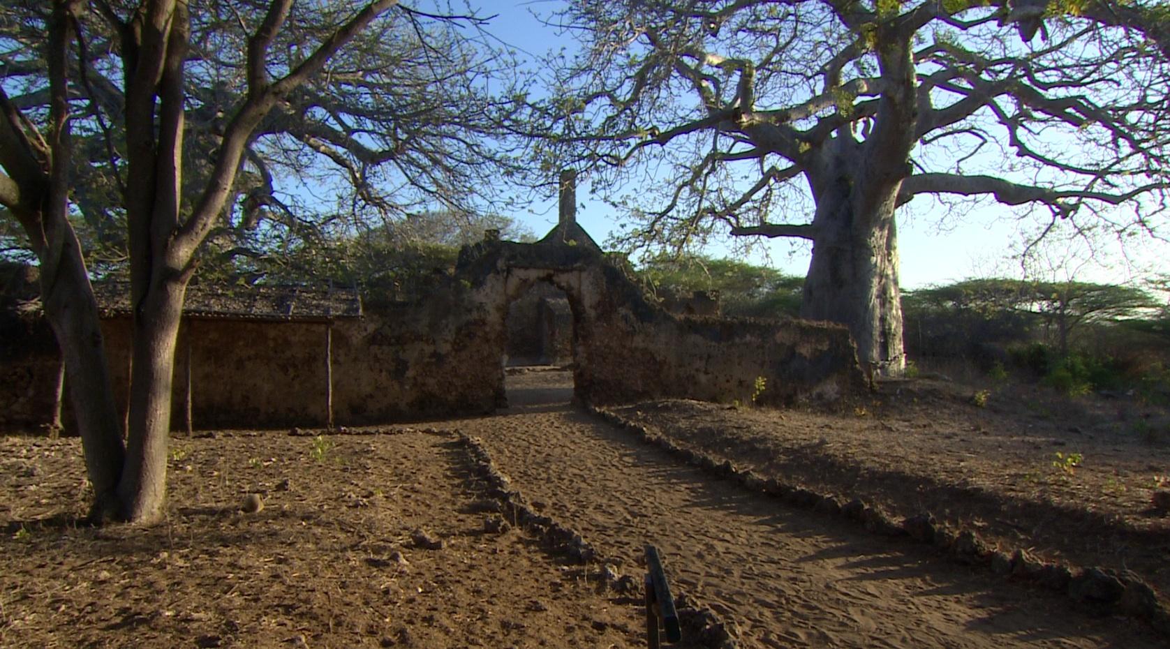 6 reasons to visit Kenya's Swahili coast | CNN Travel
