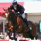 william fox-pitt showjumping