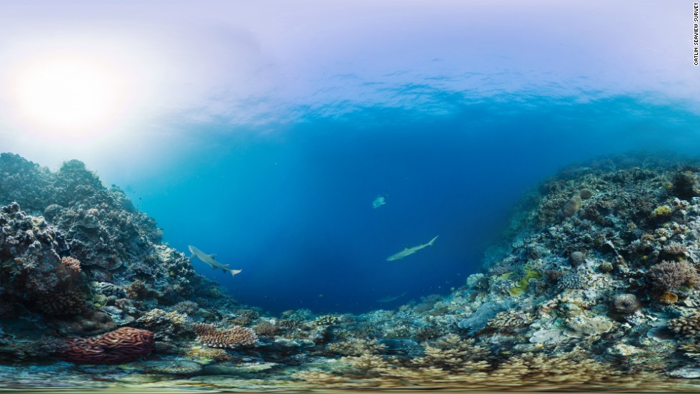 "The Catlin Seaview Survey used a 360-degree SVII-S panoramic camera to take these stunning underwater pictures of the Tubbataha Reefs National Park in the Philippines. The group is releasing them to mark ""Coral Triangle Day"" on June 9."