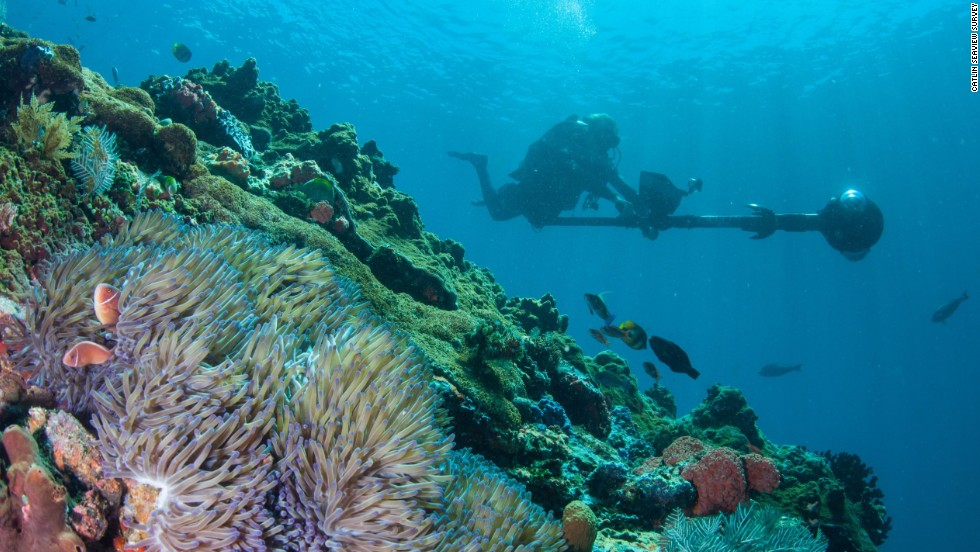 The Catlin Seaview Survey team is taking surveys of the Coral Triangle throughout 2014 to create a baseline study of reefs. It's hoped the images will help local reef management.