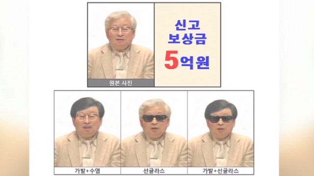 Alleged S. Korean ferry owner is missing