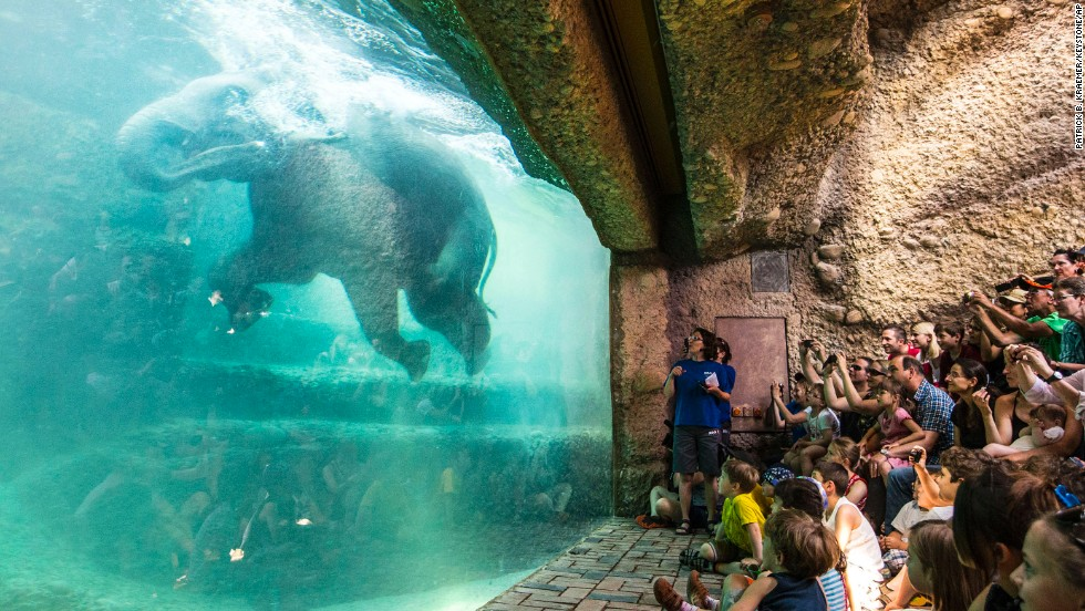 Visitors watch an elephant bathe at the Zurich Zoo in Zurich, Switzerland, on Sunday, June 8. The zoo's new elephant park provides a spacious area for the zoo's six elephants.
