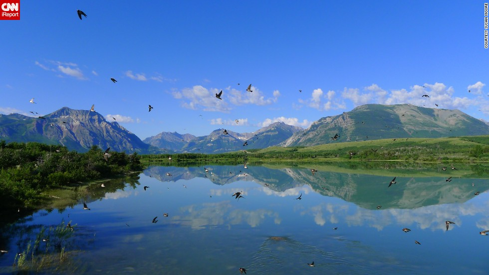 "<a href=""http://ireport.cnn.com/docs/DOC-1144530"">Susan Moore</a> stopped to capture the view at Waterton Lakes National Park in Alberta when hundreds of swallows swooped in. ""I loved the chaotic motion of the birds in combination with the tranquil reflection of the mountains,"" she said."