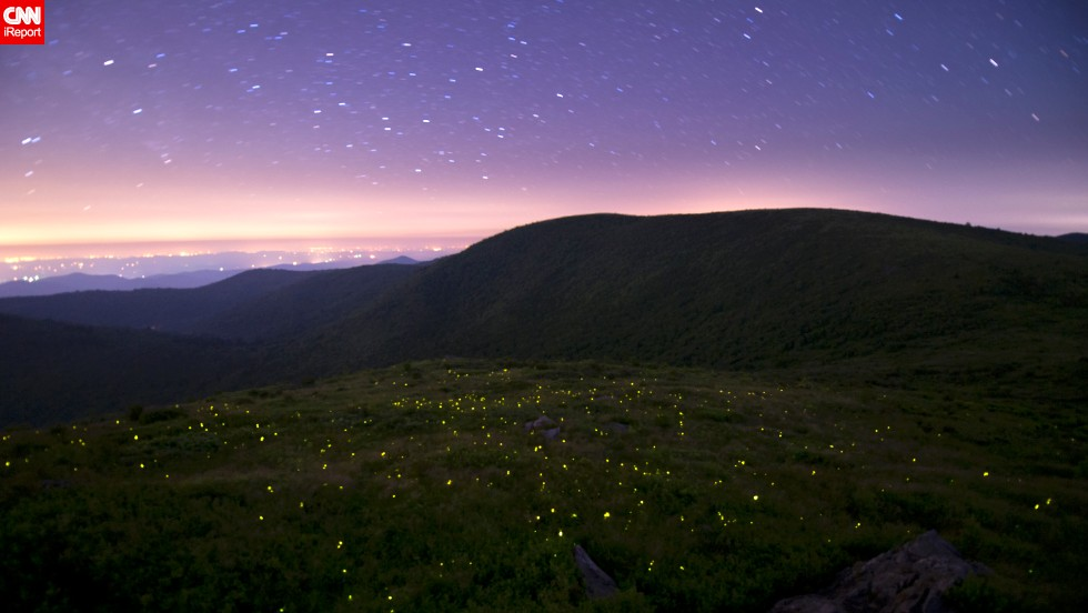 "Fireflies use their bioluminescence to attract mates during warm summer nights. <a href=""http://ireport.cnn.com/docs/DOC-1148774"">Spencer Black</a> captured these love bugs in action during a trip to the Great Smoky Mountains National Park in Gatlinburg, Tennessee."