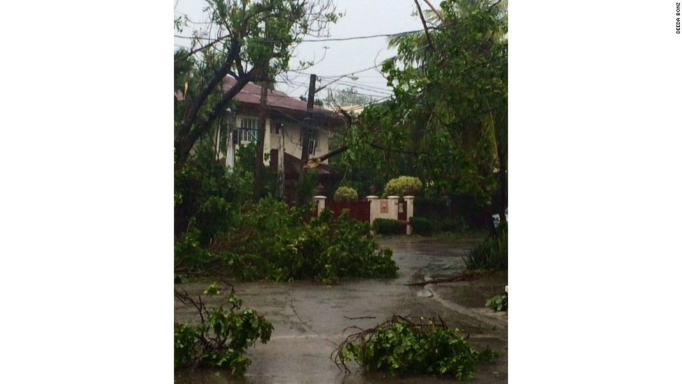 Toppled trees and downed power lines were among the damage in Alabang, Manila on July 16.
