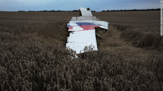 A large piece of the plane lays on the ground.