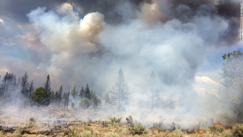 The Moccasin Hill Fire burns northeast of Klamath Falls, Oregon, on Sunday, July 13.  Lightning struck the state more than 6,000 times Sunday and Monday, sparking dozens of small fires.