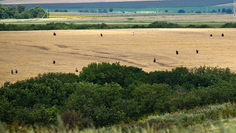 People search a wheat field for remains in the area of the crash site on July 20, 2014.